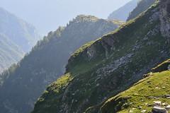 Via Alta della Verzasca 3a tappa 21 luglio 2015 - Capanna Cornavosa (1991m) - Bassa del Rosso ( 2233m) - Cima Lunga ( 2488m) - Cima di Bri ( 2521m) - Cima di Rierna ( 2461m) - Cima Gagnone (2518m) - Bocchetta Sciee ( 2434m) - Capanna Efra ( 2039m) (Photo by Lele) Tags: lago switzerland ticino tramonto via alta svizzera alpi montagna cima laghetto alpino capanna efra verzasca svizzere gagnone rierna cornavosa