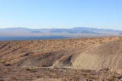 2011_11_30_3590.jpg (DrPKHouse) Tags: arizona unitedstates loco goldenvalley bouse