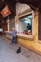Cat and Meat (Zlatko Unger) Tags: fez fes morocco fès medina tour el bali feselbali cats cat meat