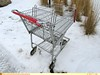 Unknown Cart (TheTransitCamera) Tags: technibilt cart shopping buggy trolley basket metal wire retail store