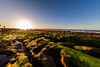 Into sun (hy931) Tags: lajolla ruggedshore reef california algae tidalpool hospitalreef