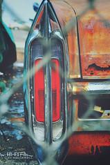 Best Days Behind (Hi-Fi Fotos) Tags: rusty abandoned cadillac fleetwood taillight junk bucket fence patina beat old trashed junkyard nikon d5000 hififotos hallewell chainlink eyesore