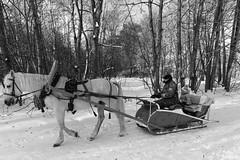 DSCF0987 (Vladimir Glebov) Tags: moscow park winter fujixpro2 xf1024