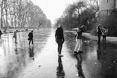 Tübingen im Winter #02 (Gerhard Busch) Tags: bäume eis eisdecke neckar platanenallee spaziergang tübingen winter gefroren