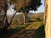 On the road to go back... (Daniele Napolitano) Tags: villabosniaski villadelpolacco villabelvedere montepisano sangiulianoterme montecastellare toscana tuscany pisa