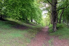 Tamfourhill.Falkirk. (boneytongue) Tags: wall roman britain empire council housing scheme falkirk antonine tamfourhill