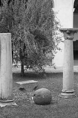 Bertaina_Francesco_08