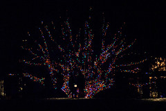 CW341 Longwood Gardens Christmas Lights (listentoreason) Tags: usa night america canon unitedstates pennsylvania scenic favorites places longwoodgardens ef28135mmf3556isusm holidaylighting score30