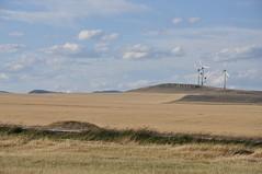 Cool futuristic looking windmills