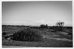 rez 04936 (m.r. nelson) Tags: arizona urban blackandwhite bw usa southwest america streetphotography az urbanlandscape artphotography negroyblanco mrnelson newtopographics nbiancoenero schwarzaufweis noirsurblanc markinaz