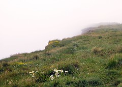 Moher: Cliff Tops in the Fog (lazzo51) Tags: ireland fog clare moher