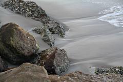 2015 Sydney: Botany Bay #25 (dominotic) Tags: beach water plane airplane boat yacht jet sydney australia nsw newsouthwales watersports tasmansea botanybay tanker sydneyairport brightonlesands portbotany 2015 penalcolony airportrunway sydneykingsfordsmithairport australianpenalsettlement