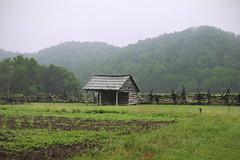(peyt0nnn) Tags: building field landscape cabin outdoor farm 1800s northcarolina overcast oldhouse logcabin americana grassland oconaluftee ocanalufte