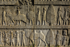 DSC_0010 (koorosh.nozad) Tags: fars iran ir persepolis persien persia achaemenid achaemenids ancient ancientpersia palace king kings darius shiraz marvdasht history ancientiran