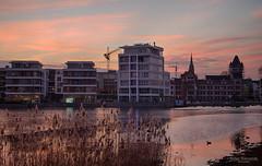 Phoenixsee, Dortmund (Zaphod Beeblebrox 1970) Tags: dortmund deutschland phoenixsee see abend germany city nrw lake recreation künstlch sunset