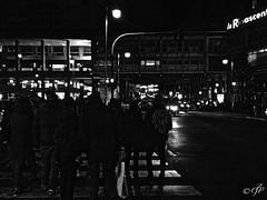 """Crosswalks"" (giannipaoloziliani) Tags: trafficlights semafori città city night notte downtown centro centre liguria italia italy genova genoa genoacity dark darkness obscure oscuro scuro buio strong noire black nero forte strange hard people persone sagome shapes ombre shadows luci lights traffico traffic buildings edifici landscape panorama nikon nikonphoto nikonphotography flickr nikoncamera nikonofficials street streetnight streetphoto streetphotography blackandwhitestreet urban urbanblackandwhite urbanstreet urbanphoto urbanphotography streetlife urbanlife citylife citylive streetlive urbanlive striscepedonali larinascente perspective prospettiva prospettica crosswalks lamps lampioni cars automobili citynightlife"