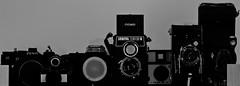 The Old School Family (Meculda) Tags: monochrome old appareil photo monochrom noiretblanc lubitel lomo nikon kodak zenit impera fisheyes camera