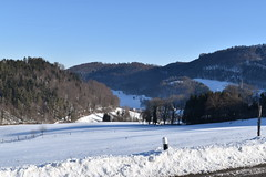 PHO_0155 (Dimi_M) Tags: neige soleil nature foret