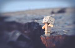 The Message. (Matt_Briston) Tags: danbo cliff edge precipice cracks danger
