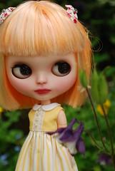 Hetty in the garden