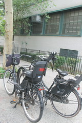 Family Parking. School Edition. (bikepeacenyc) Tags: bikenyc dutchbikes uprightcycling