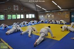 Judo-habay096