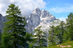 DSC_7307 (Original Loisi) Tags: panorama mountain mountains nature berg view wildlife natur berge slovenia slovenija slowenien wandern kranjskagora bergwelt republikaslovenija kronau