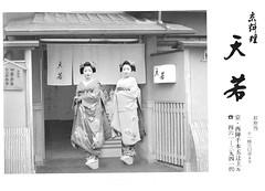 Kitano Odori 2008 012 (cdowney086) Tags: kyoto maiko 舞妓 kamishichiken 上七軒 北野をどり naokazu katsuru