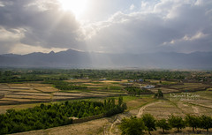 Paghman district, Kabul Afghanistan (naimatrawan) Tags: sunset afghanistan green beautiful clouds landscape view kabul greenry افغانستان مزار paghman rawan naimat کابل پغمان afghanistanyouneversee
