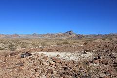 2011_11_30_3584.jpg (DrPKHouse) Tags: arizona unitedstates loco goldenvalley bouse
