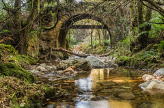 river, old bridge, Ballota-797 (dironzafrancesco) Tags: fluss bridge nature water slta99v sony imfreien langzeitbelichtung trees plant longtimeexposure spain lightroomcc architecture nd301000x tamron architektur landscape old wasser outdoor riocabo travel bäume reise natur reflection haida landschaft tamronsp2470mmf28diusd spiegelung alte pflanze asturien river spanien brücke