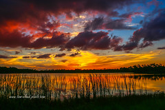 Angry Cloud Sunset (tclaud2002) Tags: sun set sunset grass pond water clouds cloudy sky reflection reflect nature mothernature outdoors outside landscape weather
