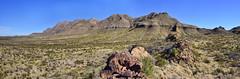 Chihuahuan Desert Vista (BongoInc) Tags: bigbendnationalpark chihuahuandesert westtexas cactus desertlandscape