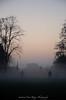 Figge's Marsh - Mitcham - Surrey (Sandrine Vivès-Rotger photography) Tags: mitcham surrey figgesmarsh park fog shadows winter sky trees england