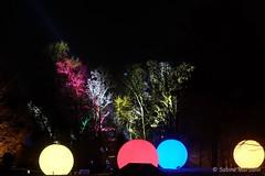 Botanischer Garten in der Nacht (Sockenhummel) Tags: botanischergarten botanischergartenberlin christmasgarden christmasgardenberlin fuji x30 fujifilm finepix fujix30 weihnachten christmas nacht night beleuchtung licht