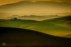 Val D'Orcia Morning (Andreas Krappweis - thanks for 3 million views!) Tags: farm fields rollinghills tuscany italy spring april morning dawn misty fog agriculture wheat farmland trees cypress sunrise yellowish green fresh nikond300 afsnikkor80200mm128d