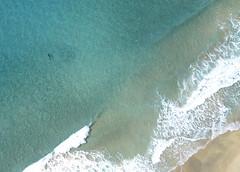 Kalalau Trail. Kalalau Beach. Shark off beach. Kalalau Trail Aerial. (lihue1946) Tags: shark napalicoast kalalau beach