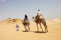 IMG_4235 (millie_difiore) Tags: camelli deserto sole caldo viaggio avventura camellos desierto sol calor viaje aventura arena personas camels desert sun hot travel adventure sand people