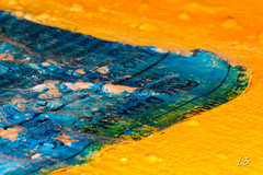 It's A-Peeling To Me (L_Barrez) Tags: macromondays itsapeelingtome painting macro peinture