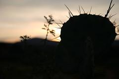 Dawn at Bell Rock (nikname) Tags: bellrock sedona arizona sunrise redrocks arizonausa arizonaredrocks bellrocksedonaarizona daw