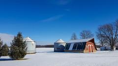 My Kind of Winter Blues (tquist24) Tags: goshen indiana samsung samsunggalaxys6 barn farm geotagged red sky snow sunshine winter unitedstates tree trees