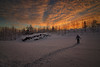 Make Your Own Path (MilaMai) Tags: ownroad winter snow human female adult woman walking deepsnow snowdrift snowscape sunset clouds dramaticsky easternfinland suomi finland finnish nature trees forest milamai atmospheric landscape path snowshoe rural countryside karelia north outdoors