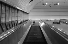 Going down (its Jason B) Tags: england blackandwhite london underground escalator tube goingdown 2015 jasonb