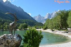 DSC_7170 (Original Loisi) Tags: panorama lake mountains alps nature landscape see view natur berge slovenia slovenija slowenien alpen gebirge steinbock kranjskagora julischealpen karawanken republikaslovenija kronau