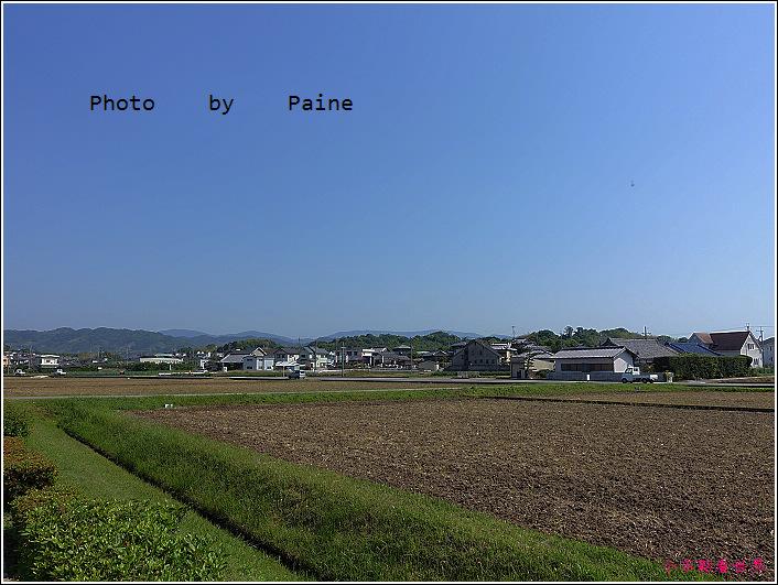 和歌山大池遊園-平池綠地公園 (34).JPG
