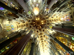 Sagrada Família (l.casadio) Tags: barcelona summer sun estate família di sagrada viaggio luce barcellona spagna catalogna caldo maturità cataluna soffitto navata splendido