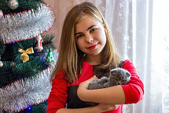 IMG_0422а (volodyainteres) Tags: happy domestic care pet animal light human young cat love kitten owner cheerful down person living fun hug sunlight people thai lifestyle emotions kitchen life sunshine interior comfortable small child casual woman beautiful kissing furniture playing cute adorable hair girl