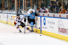 "Missouri Mavericks vs. Alaska Aces, December 17, 2016, Silverstein Eye Centers Arena, Independence, Missouri.  Photo: John Howe / Howe Creative Photography • <a style=""font-size:0.8em;"" href=""http://www.flickr.com/photos/134016632@N02/31755692555/"" target=""_blank"">View on Flickr</a>"