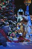 SantaLand 2016 (jpellgen) Tags: xmas christmas holidays holiday macys daytons marshallfields departmentstore historic downtown mpls minnespolis mn minnesota usa america winter 2016 december nikon sigma 1770mm d7000 santaland dayinthelifeofanelf nicolletmall