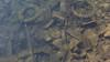 Canal bed (The eclectic Oneironaut) Tags: 2017 6d canon castillayleon christmas eos españa navidad spain valladolid canal de castilla rubbish channel wheel trash basura